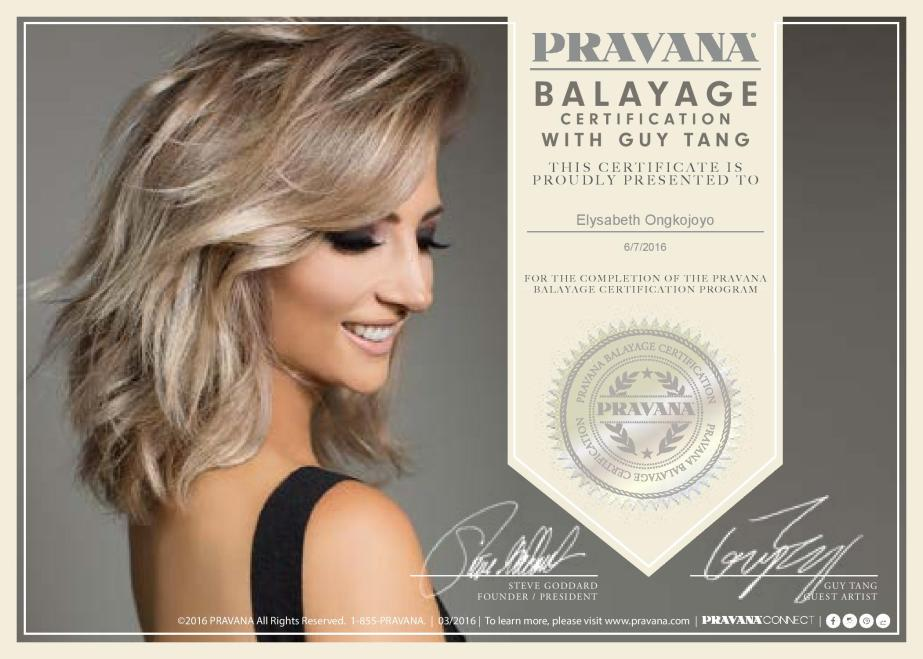 16_PV_Balayage_Diploma_5x7_Editable_protected (4)-page-001 (1)